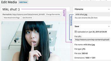افزونه تغییر نام فایل مدیا Media File Renamer وردپرس نسخه 4.2.0