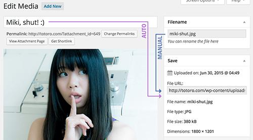 افزونه تغییر نام فایل مدیا Media File Renamer وردپرس