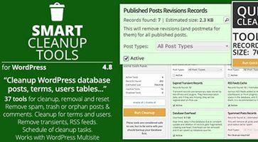 افزونه پاکسازی هوشمند وردپرس Smart Cleanup Tools نسخه 4.8