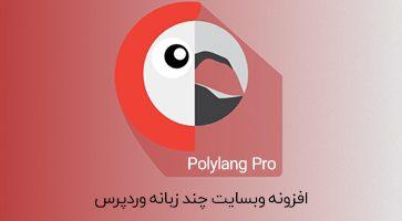 افزونه Polylang Pro وبسایت چندزبانه وردپرس نسخه 2.6.10