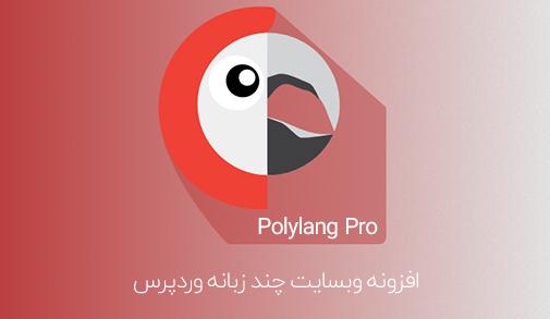 افزونه Polylang Pro وبسایت چندزبانه وردپرس
