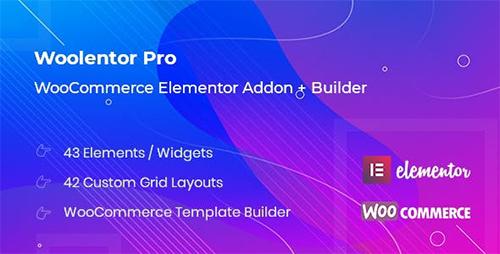 افزونه WooLentor Pro
