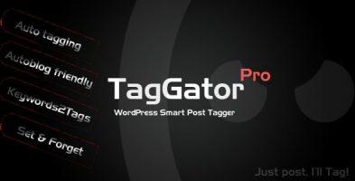 افزونه TagGator Pro ساخت اتوماتیک برچسب ها در وردپرس نسخه 2.0
